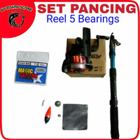 Set Pancing Reel 5 Bearings
