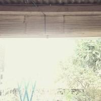 Tirai Gulung / Gorden Bambu