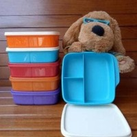 Promo Tupperware Lolly Tup Unique