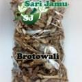 PROMO Jamu Herbal Tradisional Brotowali Untuk Mengobati Diabetes 500G