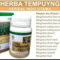obat herbal obati saluran kencing batu ginjal batu empedu radang usu