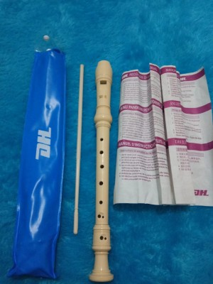 Alat Musik Tiup Recorder : musik, recorder, Suling, Recorder, Original, Musik, Sekolah, Jakarta, Timur, AGUNG, STORE, Tokopedia