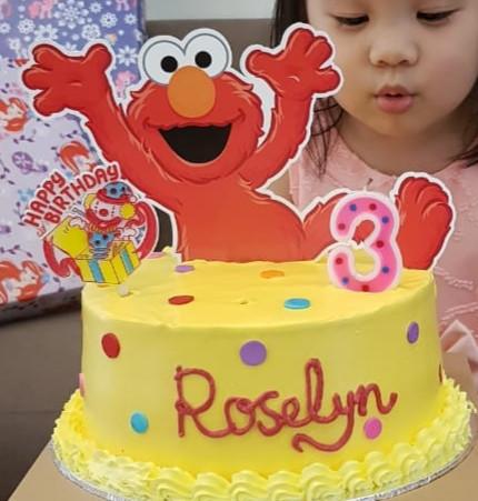Jual Elmo Cake Topper Hiasan Kue Kab Tangerang Pink Owl Party