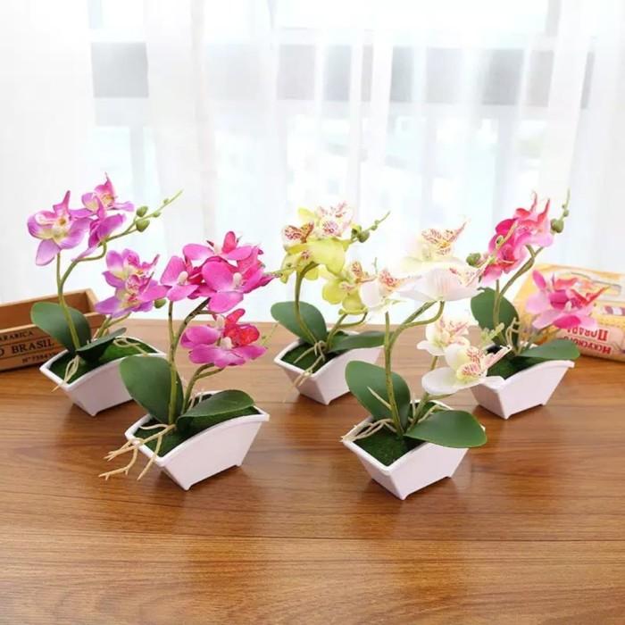 Terbaik 55+ Bunga Anggrek Model Rak Bunga Dari Besi Minimalis