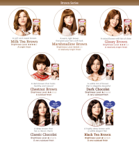 Jual LIESE Prettia Bubble Hair Color/Cat Rambut Shampoo ...