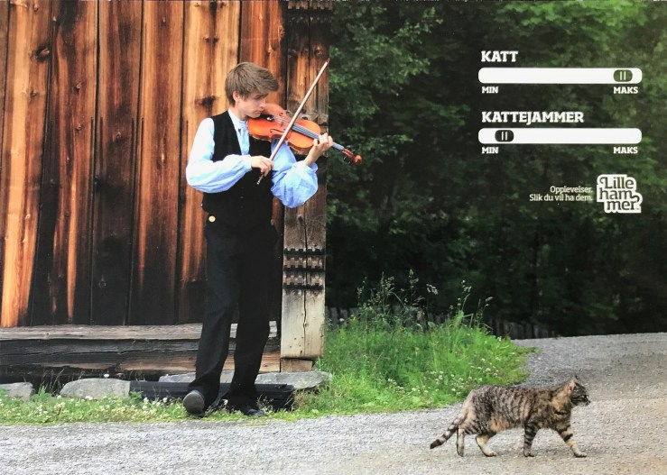 Image of a boy playing fiddle to a disinterested cat