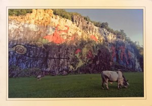 Image of colorful petroglyphs and a grazing animal