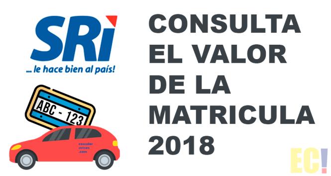 consulta matriculación vehicular 2018