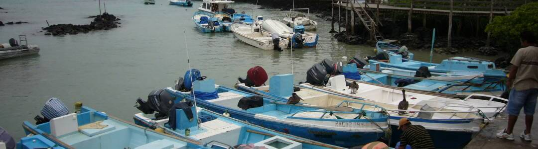 Barcos de pescadores en Puerto Ayora, Santa Cruz.