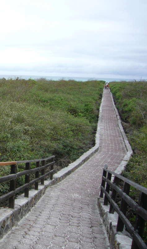Sendero a la Bahía Tortuga, Santa Cruz.
