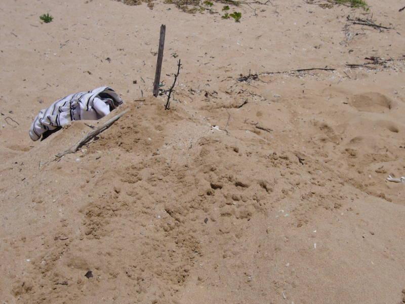 Amigo enterrado en la arena.