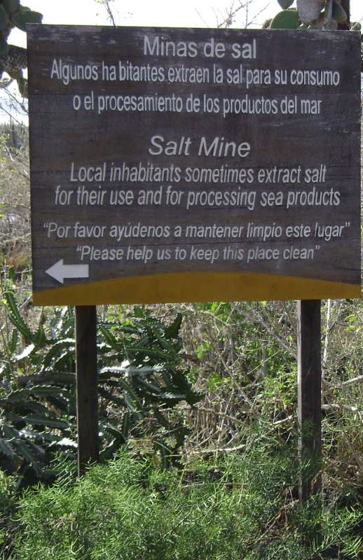Mina de sal cerca de Las Grietas.