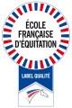 logo-efe-2008-