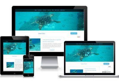 Aqua Blue Charters