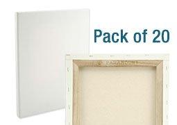 paramount bulk canvas bulk