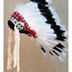 Regular Warbonnet