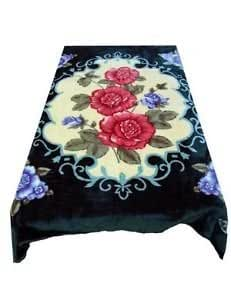 Amazoncom Solaron Korean Blanket throw Thick Mink Plush