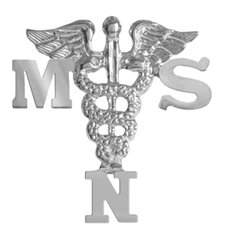 NursingPin-Masters-of-Science-in-Nursing-MSN-Graduation-Nurse-Pin-in-Silver