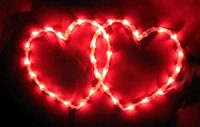 Amazon.com - Valentine's Day 2 Heart Side by Side LIGHT ...