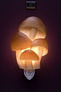 Mushrooms Night Light - Mushroom Lamp - Amazon.com
