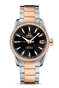 Omega Seamaster Aqua Terra Schmuck 231.25.39.21.51.001