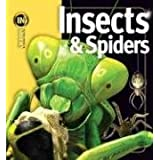 Insiders: Insects & Spiders