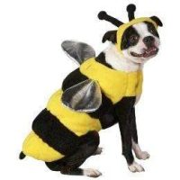 Amazon.com : Bumble bee Dog Costume Size Medium : Pet ...