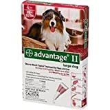 Flea Control for Dogs and Puppies in Red