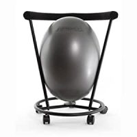 Amazon.com : The ERGO Chair - an Ergonomic Exercise Ball ...