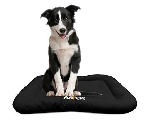 aspen pet sofa bed for dogs cats assorted colors gus modern jane dog beds | supplies - warning: save up to 87% on ...