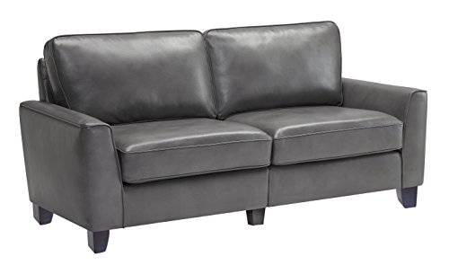 Serta CR46761 RTA Astoria Coated Fabric Sofa, 73