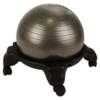 Amazon.com : Fit-Chair 40090 with Base : Exercise Balls ...
