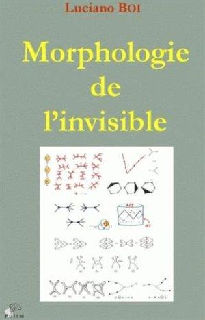 Libro Morphologie de l'invisible : Transformations d'objets, formes de l'espace, singularités