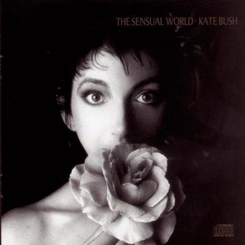 "Cover of ""Sensual World"""