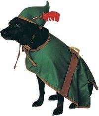 Doggie Robin Hood Pet Costume - Small: Amazon.co.uk: Pet ...