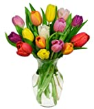 Easter - Rainbow Tulip Bouquet - 15 Stems (FREE Vase Included)