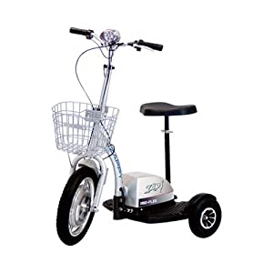 Amazon.com : Zappy Electric Mobility/Fun Scooter, Model