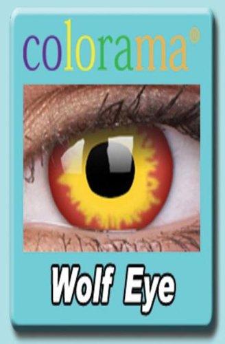 Farbige Kontaktlinsen Crazy Motivlinsen Kostüm Karneval WOLF EYE