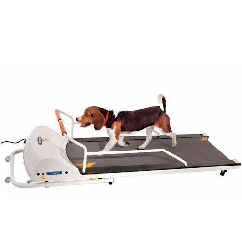ペットラン PR-720F [中・大型犬の運動器】 全長1m dog treadmill