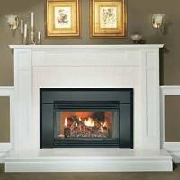 Amazon.com: Napoleon GICSK GI3600N Gas Fireplace Insert ...
