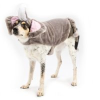 Elephant - Dress Up Dog Costume (X-Small) | Price, Reviews ...