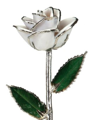 Snow-White-Laquered-Platinum-Dipped-Long-Stem-Genuine-Rose-In-Red-Gift-Box