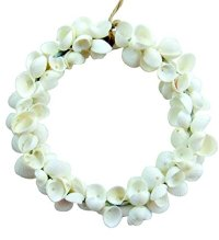 Seashells | Shopswell
