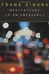 "Cover of ""Meditations in an Emergency"""