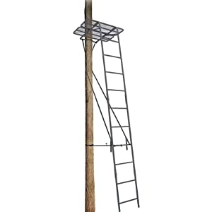 Amazon.com : Big Dog Treestand 2007-2009 5' Ladder