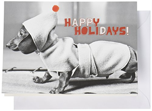 Holiday Boxed Dachshund in Coat