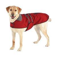 Casual Canine Velvet/Polyester Reflective Dog Jacket, X ...