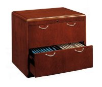 Harrison Hahn: 2 Drawer Lateral File Cabinet by DMI Office ...