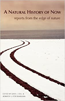 A Natural History of Now Jennifer Duffield White nature writing
