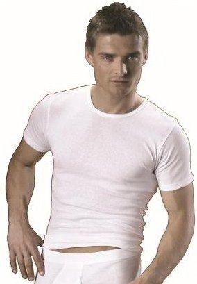 HERMKO 3840 Doppelpack Herren Shirt aus 100% europäischer Baumwolle, kurzarm Hemd aus Naturfaser, 1/2-Arm Unterhemd schadstoffgeprüft nach Öko-Tex 100 direkt ab Werk, for men